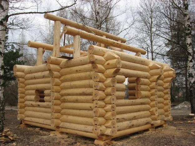 древесина кедр