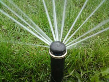 Местная система полива